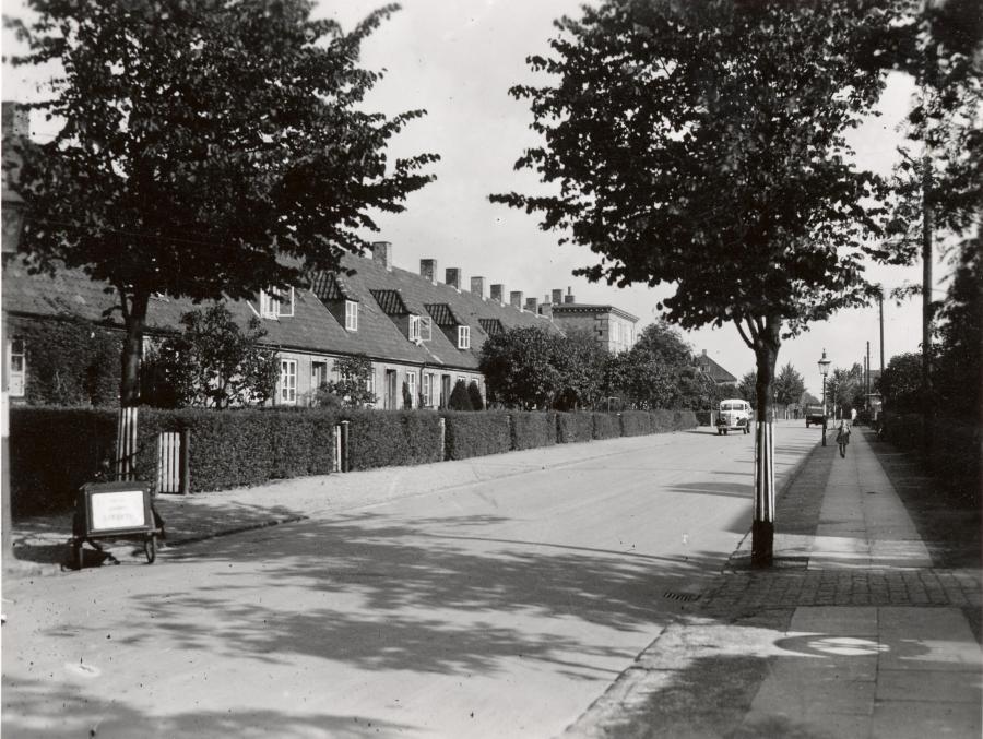 Rækkehuse på Rygårds Allé i Studiebyen.