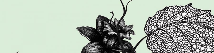 Litteraturformidleren anbefaler Året af Tomas Espedal