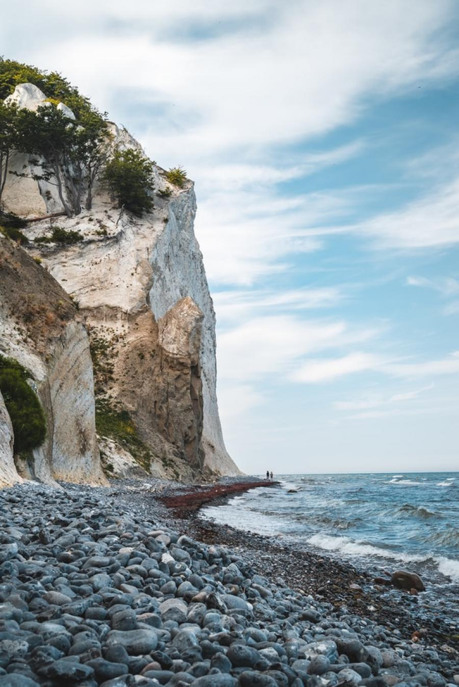 Vild natur ved Møns klint.