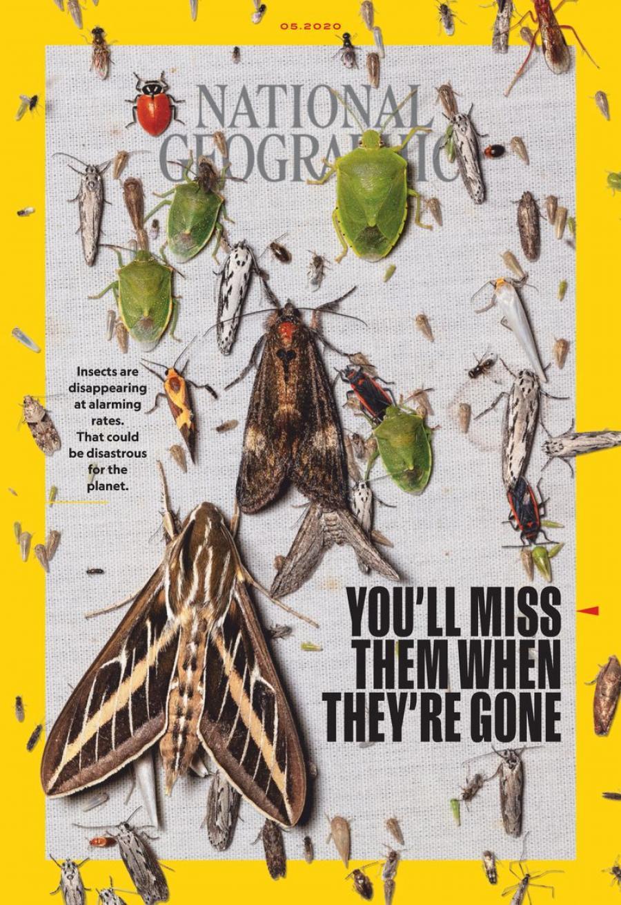Forsiden af National Geographic juni 2020