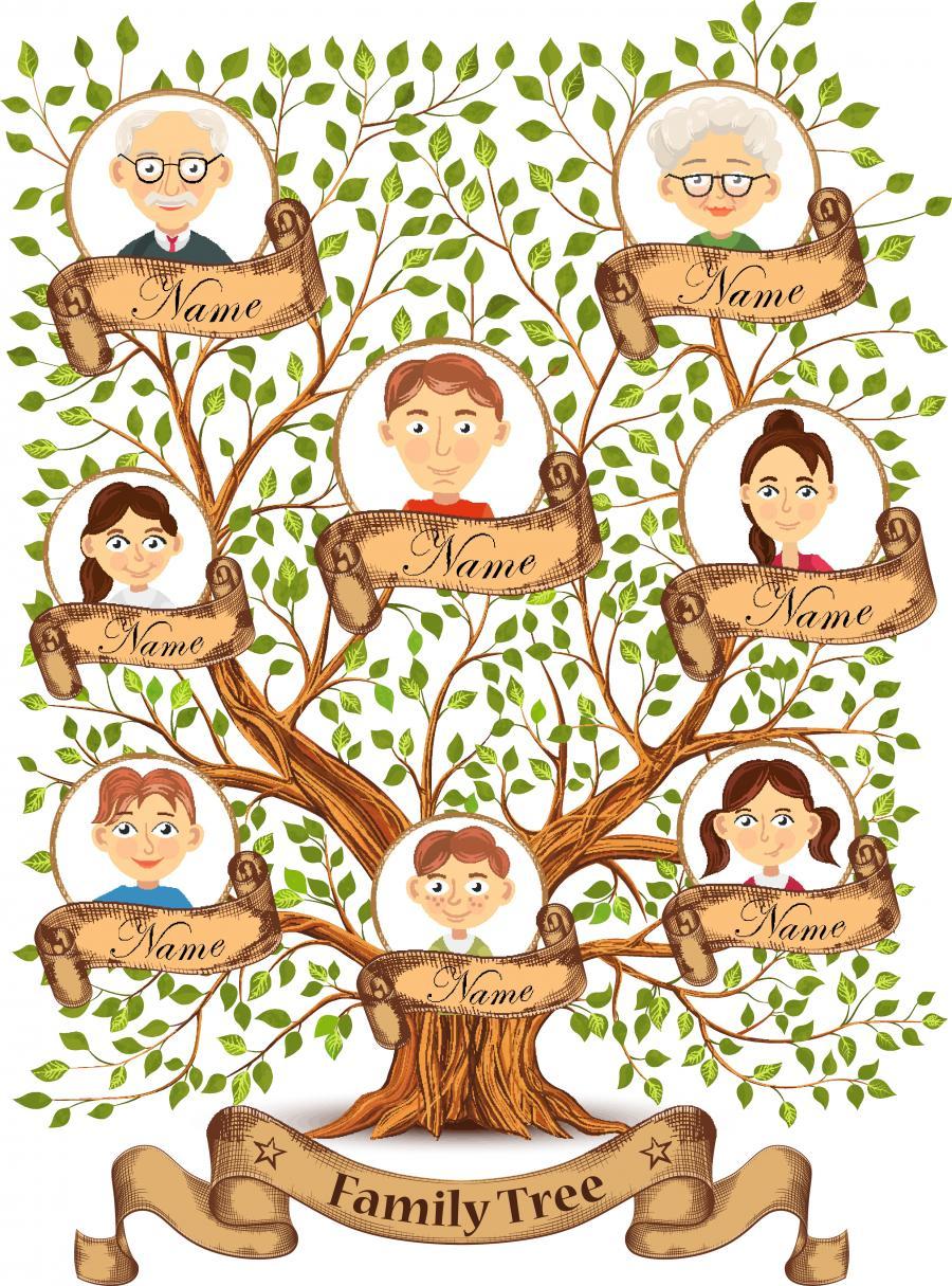 Colourbox: billede af slægtstræ